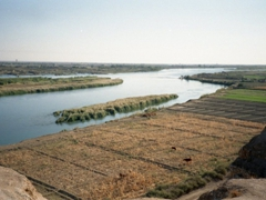 Overlooking the Euphrates River from Dura Europos