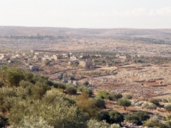 Surprisingly, the Syrian countryside isn't all desert!