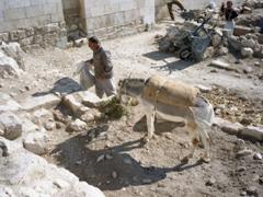 Renovation work at the Aleppo citadel