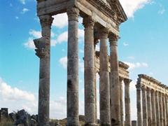 Gray granite columns, Al-Ghab plain, Apamea