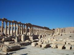 The colonnade of the Decumanus, Palmyra