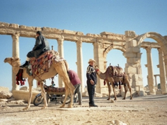 Thankfully, there isn't too much pressure for a camel ride through Palmyra!