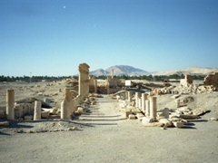 The ancient city of Palmyra was mentioned in the Old Testament as being fortified by Soloman (just to give some perspective on how old this fascinating desert city is!)