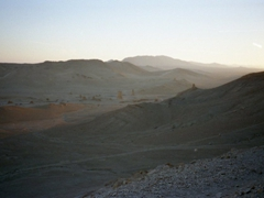 Peaceful scene of Palmyra at sunset