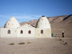 A beehive shaped building near Palmyra (no doubt to lure in the tourists!)