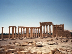 Another view of the colonnade of Palmyra