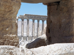 Artistic shot of Palmyra's colonnade