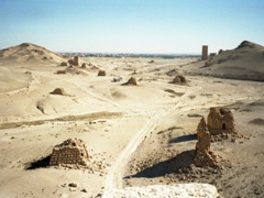 Another view of the Valley of the Tombs; Palmyra