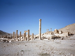 We had an entire free morning to explore Palmyra but it wasn't enough time!