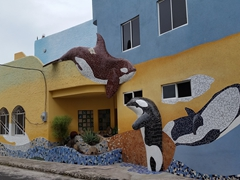 Art work on a house in Puerto Baquerizo Moreno; San Cristobal Island