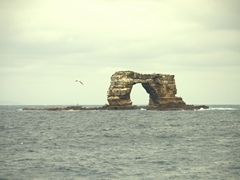 One of our favorite places on earth, Darwin's Arch! Diving here is spectacular due to the abundance of marine life