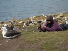 Becky getting some albatross video