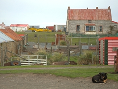 The settlement section of Saunders Island. We stocked up on food here from the tiny convenience store