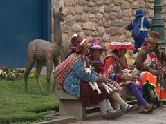 Incan women sitting around with baby llamas to earn money from tourists