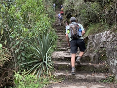 It is all uphill on the 1.2 mile hike to the peak of Huayna Picchu mountain