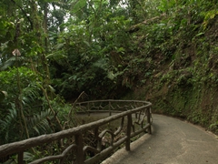 The easy walking trails of Mistico Park