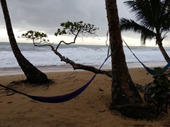 Hammocks to lounge in; Playa Bluff