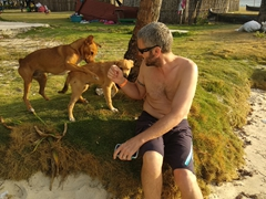 Robby makes friends with the island dogs