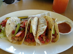 $4 shrimp tacos for lunch at Taco Surf; El Tunco