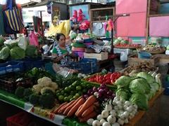 Vegetable vendor; Santa Ana market
