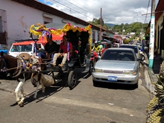 Horse carriage rides on offer at the Juayua festival
