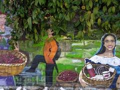 Coffee pickers; Ataco