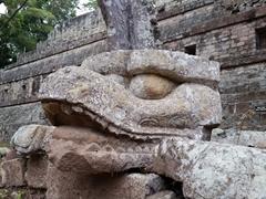 Caiman carving; Copan Ruins