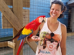 Becky with a scarlet macaw
