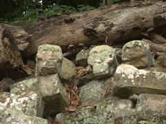 Carved skulls; Copan Ruins
