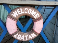 Welcome to Roatan!