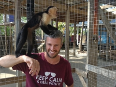 Robby getting inspected by a white-faced capuchin monkey