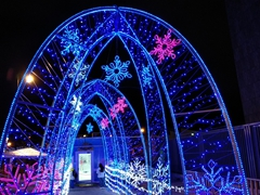 Christmas light display; San Jose