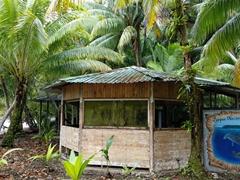 Cocos Island National Park
