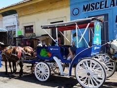 Horse carriages await shoppers at the Granada market