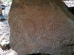 Petroglyphs carved on a boulder at Finca El Porvenir