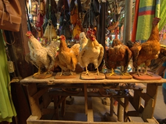 Taxidermy chickens - a bizarre souvenir option at the Masaya market