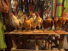 Taxidermy chickens - a bizarre souvenir option at the Masaya market