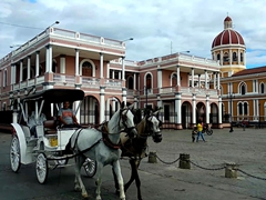 A horse carriage passes by the Episcopal Palace and Granada Cathedral