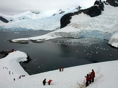 Our first landing on the Antarctic continent this trip and we hiked up for a view over Paradise Harbour