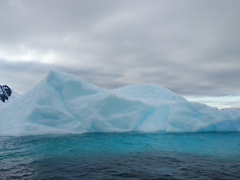 Beautiful blue iceberg; Paradise Harbour