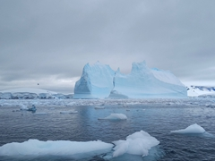 Massive iceberg; Fournier Bay
