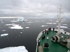 Weaving our way through icebergs as we cruise down to the Antarctic Circle