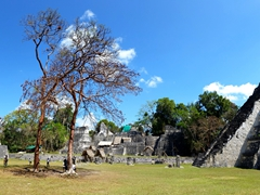 Panoramic view of the Great Plaza with the Temple of the Jaguar on the far right; Tikal
