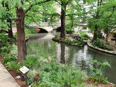 San Antonio's famous river walk
