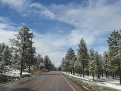 Sunny conditions as we drive to Bryce Canyon