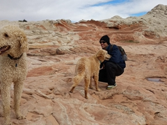 Robby befriends two dog visitors at White Pocket