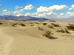 Mesquite Flat sand dunes; Death Valley