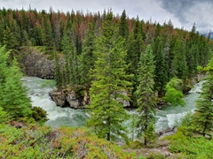 View of Maligne Canyon on our hike from 6th bridge; Jasper