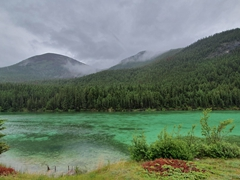 Emerald green lake; Jasper National Park