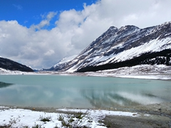 Glacial pond at the base of Athabasca Glacier